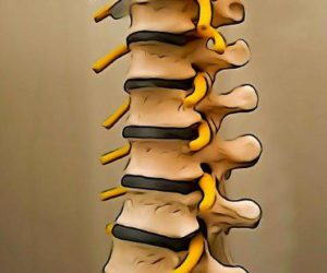 Contact Us to book an appointment: www.rdphysio.com